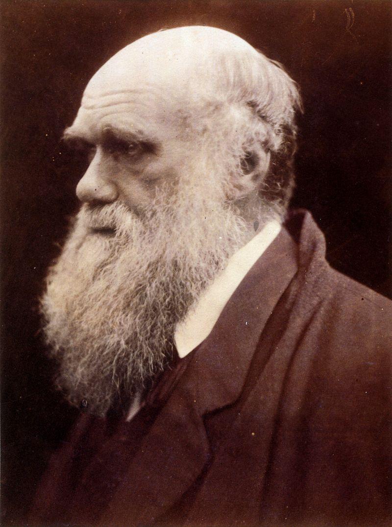 Charles Darwin despre politician și popă